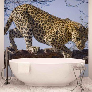 Leopard Tree Fototapet