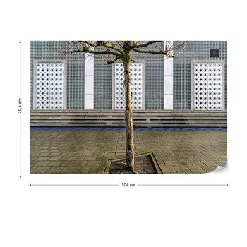 Little Tree Scape Fototapet