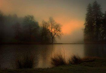 Lovely Dawn Fototapet