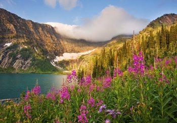 Nature's Glory Fototapet