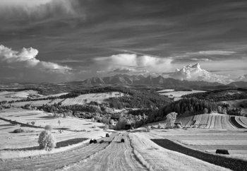 Polish Landscape Fototapet