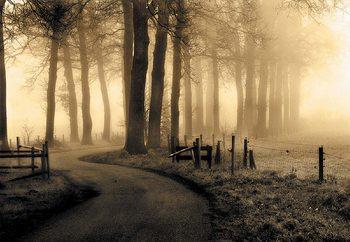 Road To Nowhere... Fototapet