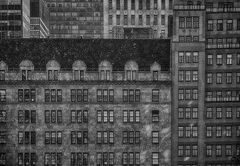 Small Windows Of Opportunity Fototapet