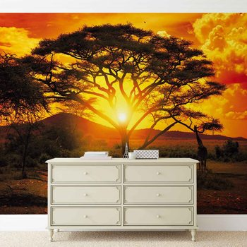 Sunset Africa Nature Tree Fototapet