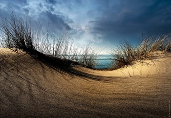 To The Beach Fototapet