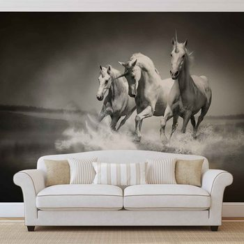 Unicorns Horses Black White Fototapet