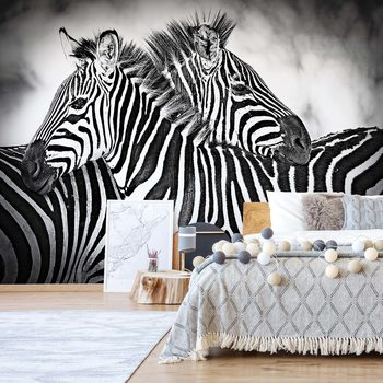 Zebras Black And White Fototapet
