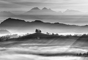 Morning Rays Tapéta, Fotótapéta