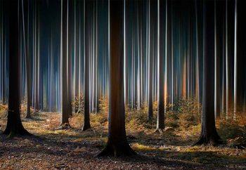 Mystic Wood Tapéta, Fotótapéta