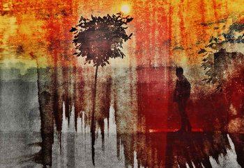 Shadows Tapéta, Fotótapéta