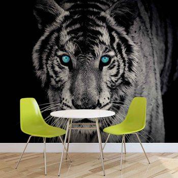 Tiger Animal Fali tapéta