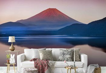 A Quiet Time In Mount Fuji Fototapeta
