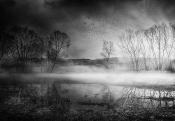 After The Rain Fototapeta