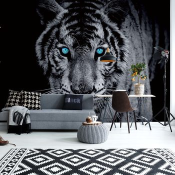 Black And White Tiger Blue Eyes Fototapeta
