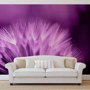 Dandelion Flower Fototapeta