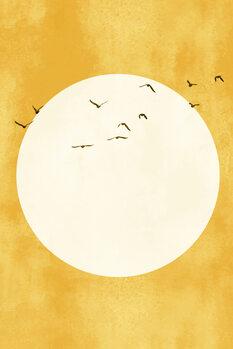 Eternal Sunshine Fototapeta