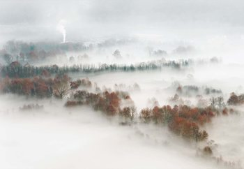 Factory Fog Fototapeta