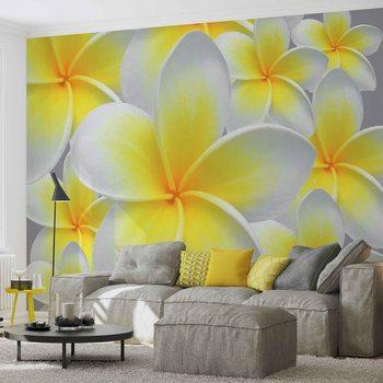 Floral Pattern Fototapeta