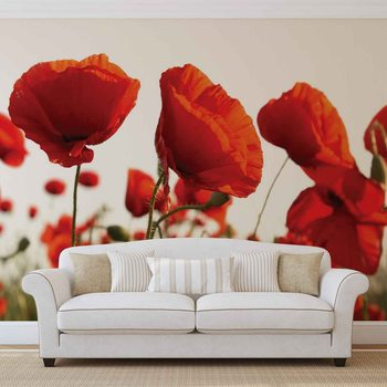 Flowers Poppies Field Nature Fototapeta