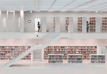 In The Library Fototapeta