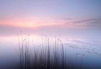 The Tranquility Of The Lake Fototapeta
