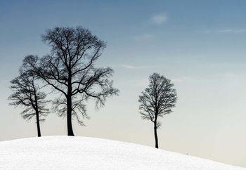 Winter Haiku Fototapeta