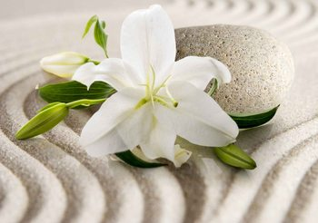 Blume Sand Fototapete