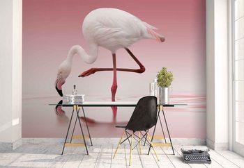 Flamingo Fototapete
