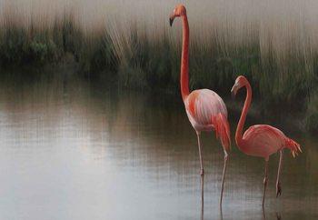 Flamingos On The Lake Fototapete