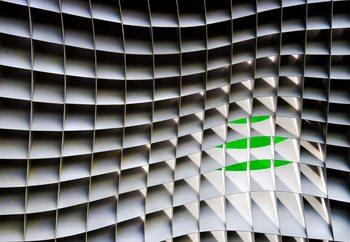 Green Beyond Fototapete