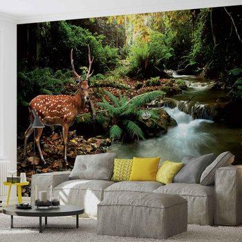 Hirsch Wald Natur Fototapete