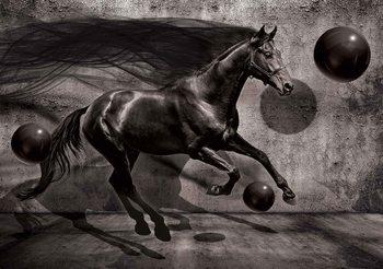 Horse Spheres Black 3D Fototapete