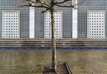 Little Tree Scape Fototapete