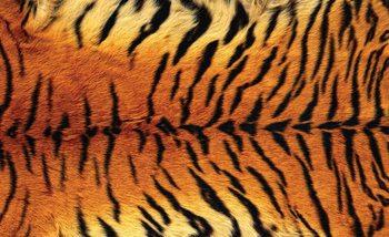 Tiger Fell Fototapete