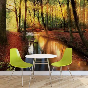 Wald Fluss Strahl Licht Natur Fototapete