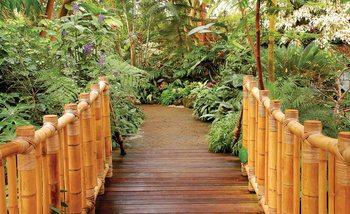 Wald Natur Weg Bambus Fototapete