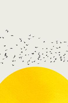 A Thousand Birds Fototapet