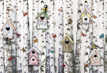 Birch Trees And Birdhouses Vintage Chic Fototapet