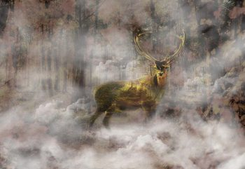 Forest Stag In The Mist Fototapet