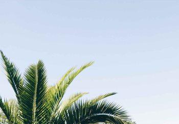 Island Colours Fototapet