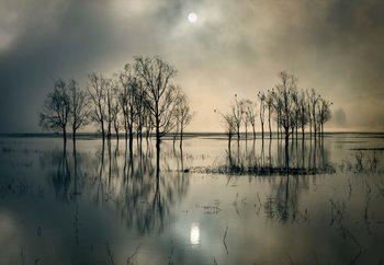 Lake's Secret Fototapet