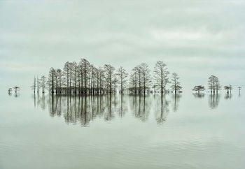 Lake-Shore Lineup Beauty Fototapet