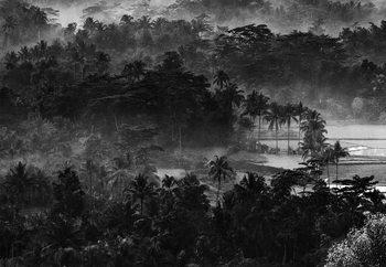 Mist In The Morning Fototapet