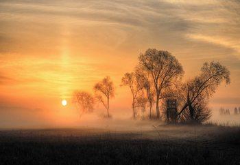 Misty Sunset Fototapet