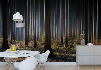 Mystic Wood Fototapet