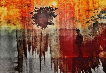 Shadows Fototapet