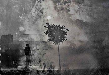Splitting Shadows Fototapet