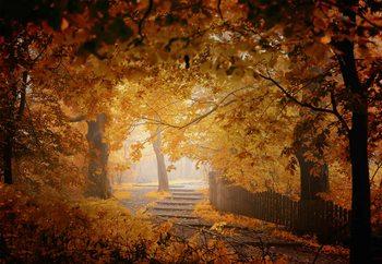 Turn To Fall Fototapet