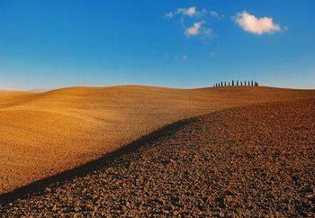 Tuscan Fields Fototapet