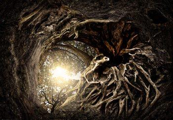 Under The Trees Fototapet